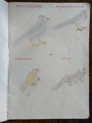Weisz Miklós rajzfüzete