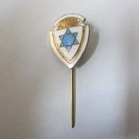 Pajzs alakú jelvény Dávid-csillaggal