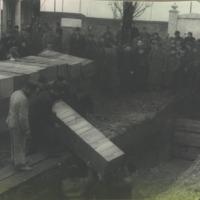 Nyugat-Magyarországon exhumált munkaszolgálatosok temetése a Kozma utcai temetőben