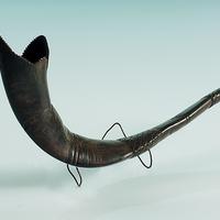 Sófár (Kosszarv)Shofar (Ram's horn)