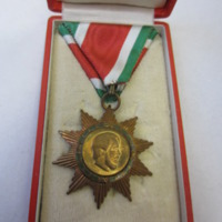 Magyar Szabadság Érdemrend kitüntetése